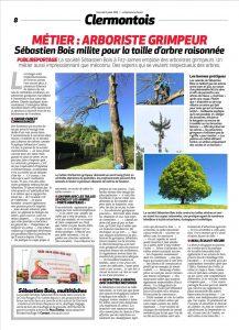Sébastien bois et le métier d'arboriste grimpeur