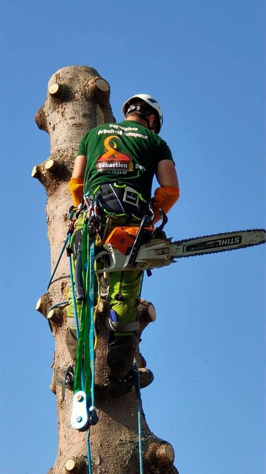 Démontage d'arbre
